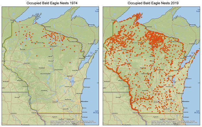 Balgalvas ērgļa izplatība kas... Autors: Lestets 20 neparastas kartes, kas var mainīt perspektīvu
