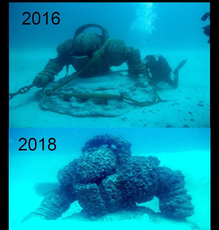 Mākslīgais rifs pie Brisbenas... Autors: Lestets Cilvēka veidoti zemūdens objekti, kas liks bailēs peldēt prom