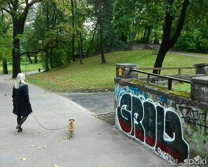 Autors: Grow traks Graffiti 2021